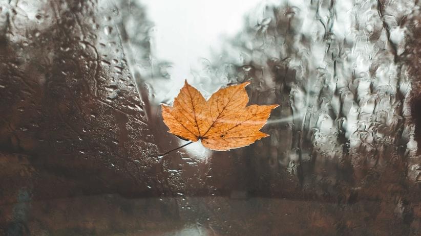 Pogoda. Niedziela chłodna i deszczowa