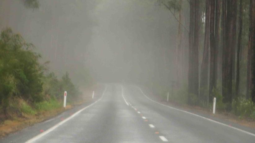 Pogoda. Poranne mgły. Na wschodzie opady deszczu i burze