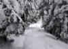 Ponad 2 metry śniegu na Kasprowym. Widoki zapierające dech w piersiach [ZDJĘCIA]