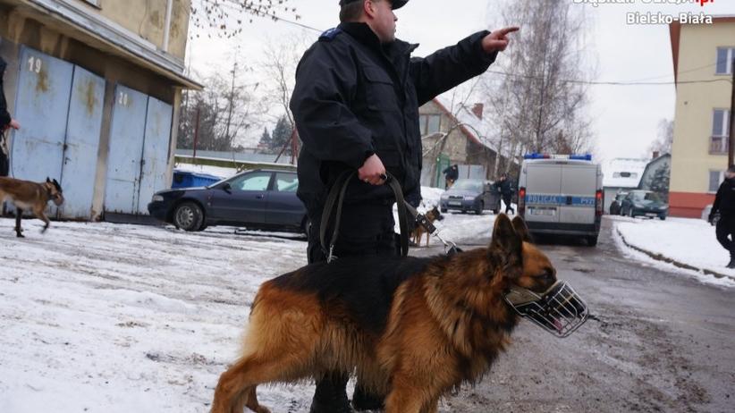 Pies policyjny EPO