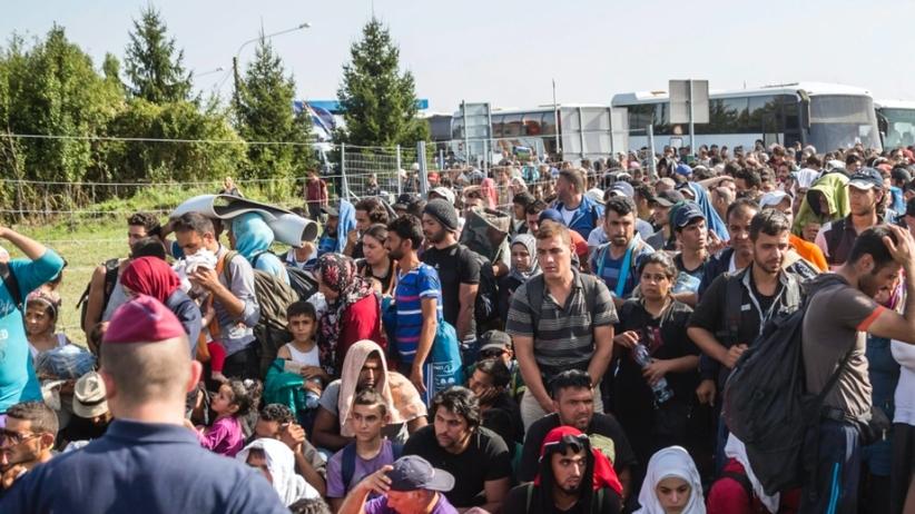 Rząd odpowiada KE ws. uchodźców. Włochy i Grecja nie pomagają w weryfikacji wiarygodności migrantów