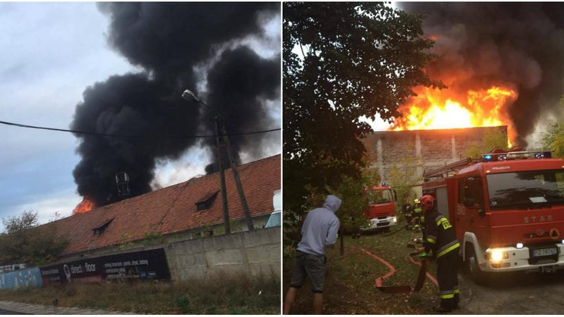 Poznań. Pożar w fabryce opakowań. Z ogniem walczy 19 zastępów straży pożarnej