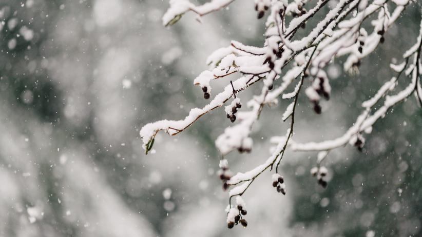 Pogoda w piątek. Możliwe zawieje i zamiecie śnieżne