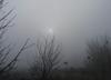 Pogoda na walentynki. Zachmurzenie, mżawka a rano – mgły