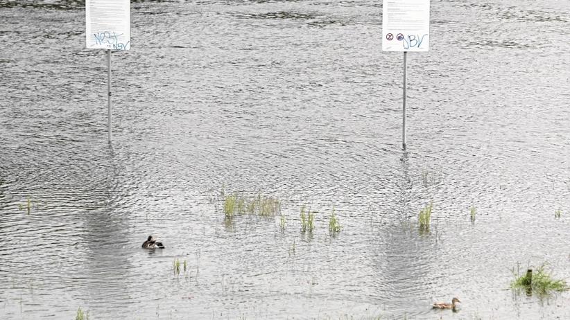Rzeki przekroczyły stany alarmowe po nocnych opadach deszczu