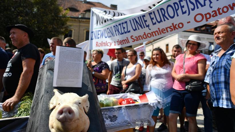 Sandomierz. Kłótnia ministra ronictwa Jana Ardanowskiego z rolnikami