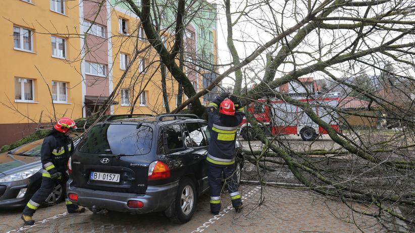 Skutki wichury nad Polską i prognoza na kolejne dni: wróci śnieg
