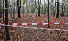 Morderstwo w Katowicach. Ujawniono tożsamość ofiary