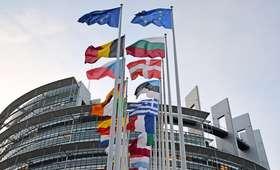 Sondaż IBRIS: Koalicja Europejska wygrywa w wyborach do PE