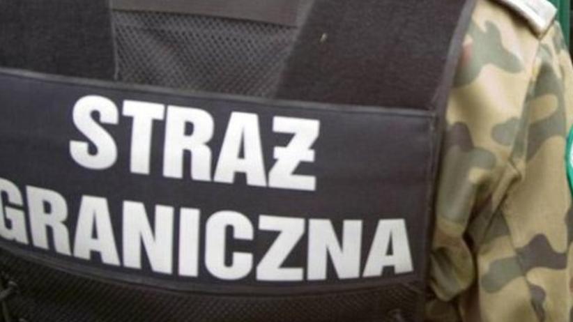 Straż graniczna zatrzymała ośmiu Turków, Ukraińca i Syryjczyka