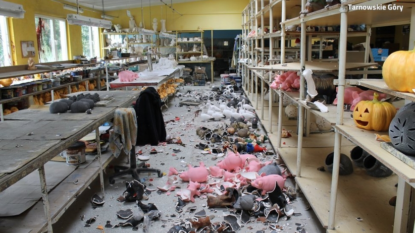 Tarnowskie Góry. Ukrainiec zdemolował fabrykę na 25 tysięcy złotych