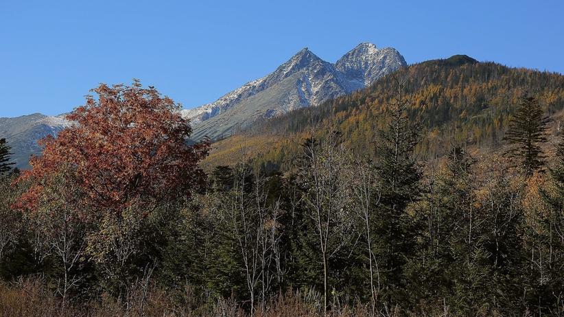 W Tatrach spadł śnieg [FOTO]