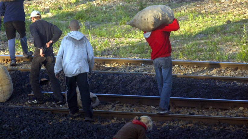 złodzieje węgiel