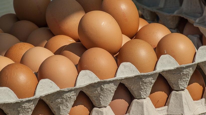 Ze sklepów Tesco znikną jaja z chowu klatkowego