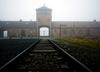 Nastolatki hajlowały przed bramą Auschwitz-Birkenau. Prokuratura podejmuje czynności