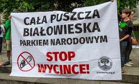 Protest w obronie Puszczy Białowieskiej