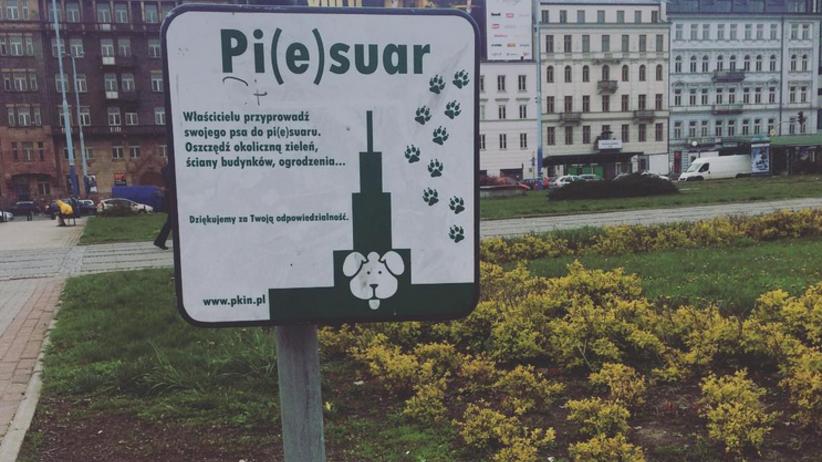 W Warszawie stanęły nowe psie toalety
