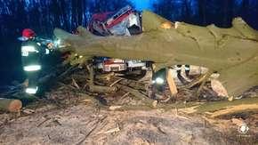 Drzewo runęło na wóz strażaków podczas interwencji. Dwie osoby poszkodowane