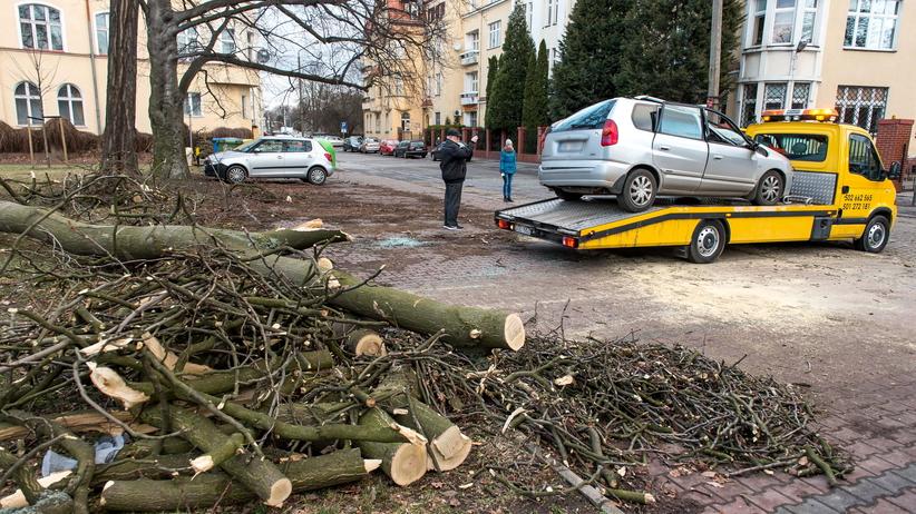 Wichury w Polsce: wiatr zrywa dachy i wyrywa drzewa z korzeniami