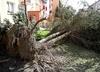 Polska po wichurach. Prawie 400 tys. gospodarstw bez prądu. Dwóch strażaków zostało rannych