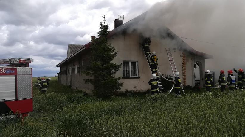 Wielkopolska. Po pożarze domu rodzina bez dachu nad głową