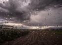 Zachmurzenie i przelotne opady.  Prognoza pogody na 16 i 17 lipca