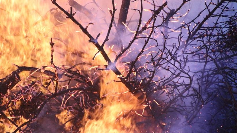 RCB alarmuje. Zagrożenie pożarowe w Polsce