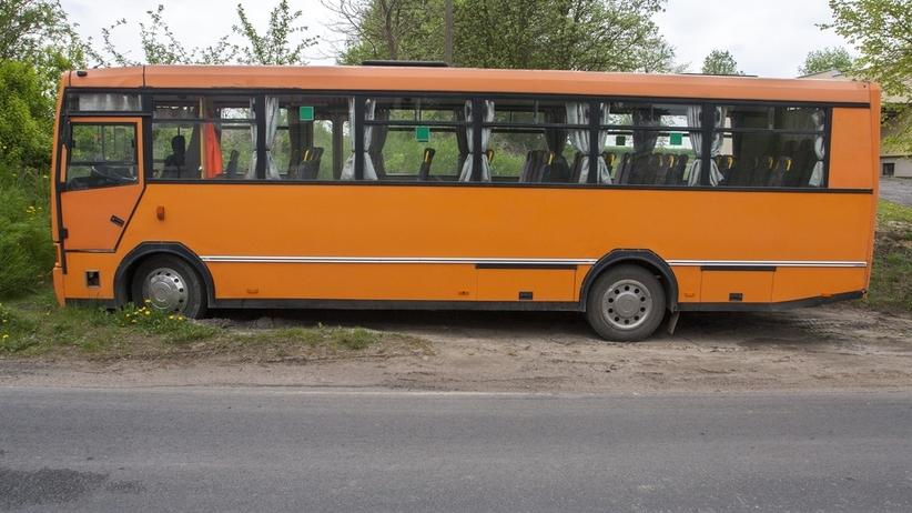 Jeleń zderzył się z autobusem wiozącym dzieci do szkoły. Ranna uczennica
