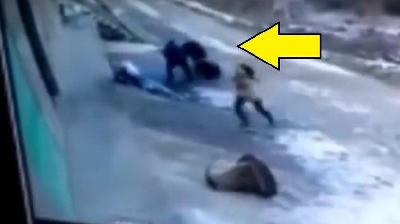 100-kilogramowy dzik zabił 66-latka. Kamera nagrała walkę ze zwierzęciem [WIDEO]