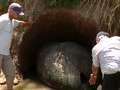 Argentyński farmer natknął się na olbrzymią skamielinę. Naukowcy nie mogli uwierzyć