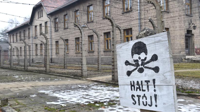 Wstrząsająca opowieść więźniarki Auschwitz. ''Kazali jej wykopać grób...''