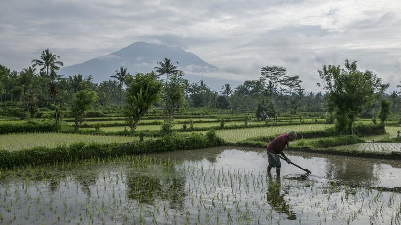 Kilkadziesiąt tysięcy osób ucieka przed erupcją wulkanu