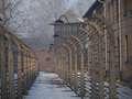 Niemcy: Mówiła, że komory gazowe w Auschwitz nie istniały. Usłyszała wyrok sądu