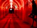 Brutalne morderstwo prostytutki w Hamburgu. Fragmenty ciała w całym mieście