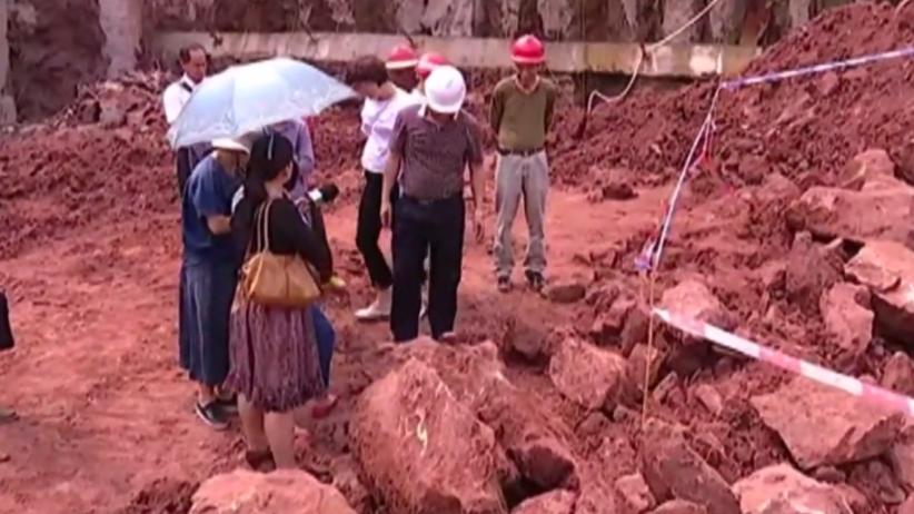 W Chinach odnaleziono skamieniałe jaja dinozaurów. Mają 70 milionów lat [FOTO]