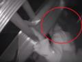 Dziewczynka spadła do szybu windy. Dramat rozgrywał się na oczach matki [WIDEO]