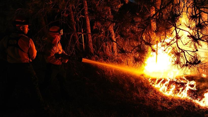 Polak podpalił las w Czarnogórze. Spędzi rok w więzieniu