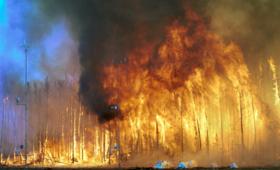 Polak wywołał wielki pożar w Czarnogórze. Spłonęły setki drzew