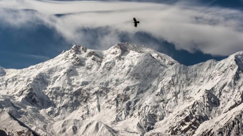 Nieoficjalnie: Revol i Mackiewicz zdobyli szczyt Nanga Parbat