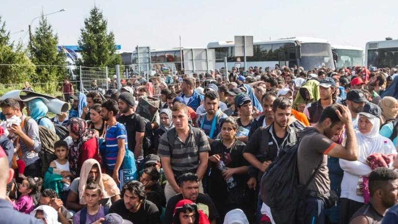 Helsinki o uchodzcach
