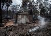 Grecja. Relacja Polaka, którego najbliżsi zginęli w pożarze lasów
