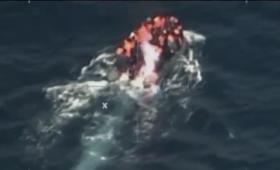 Płonący ponton z migrantami u wybrzeży Hiszpanii [WIDEO]