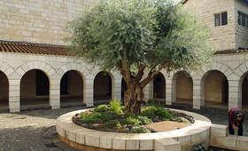 Izraelczyk podpalił kościół. Sąd uznał go winnym