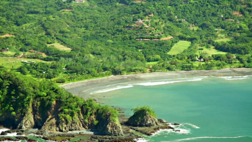 Staż marzeń? Wakacyjna praca z papugami na Kostaryce
