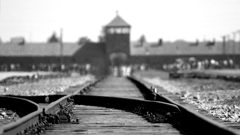 Niemcy znów zakłamują historię. 'Polskie obozy' w niemieckim podręczniku