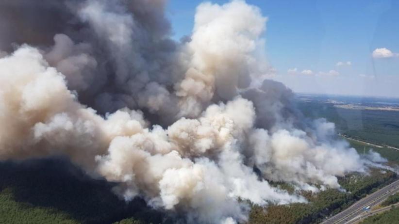 Niemcy. Pożar lasów koło autostrady w Poczdamie