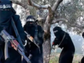 ISIS wzywa kobiety do zabijania: Szykujcie się na poświęcenie Allahowi
