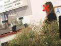 Po świętach oddała choinkę do sklepu. Domagała się pieniędzy!