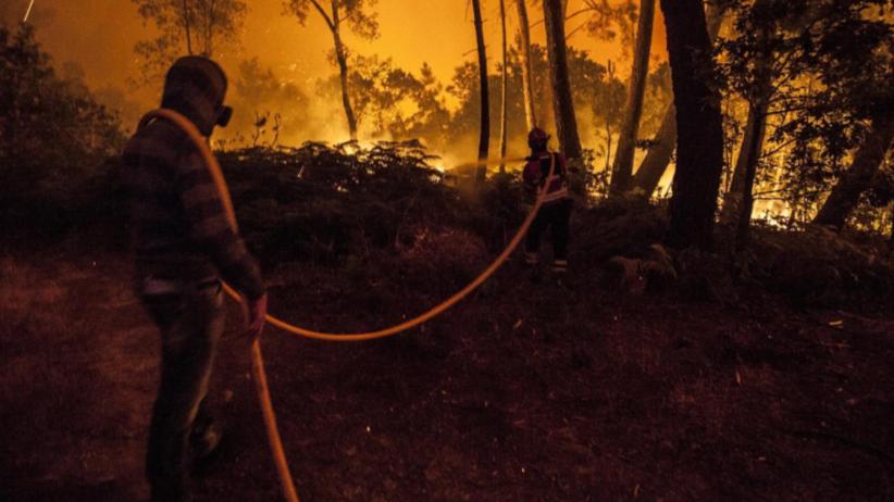 Wzrasta liczba ofiar pożaru w Portugalii. Dramatyczna akcja służb [FOTO]