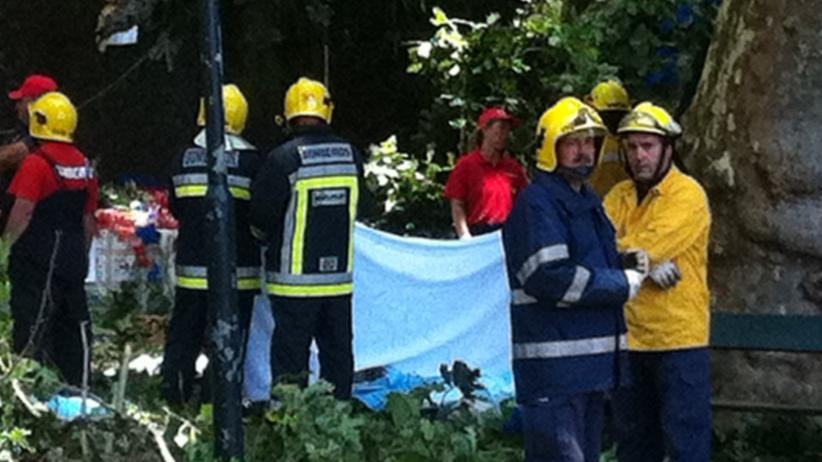 Drzewo przygniotło ludzi na Maderze. Są ofiary śmiertelne [WIDEO]